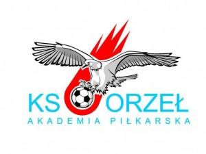 AP-Orzeł-logo-300x225