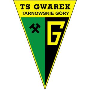gwarektarnowskiegory